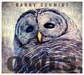 Owls Album Cover